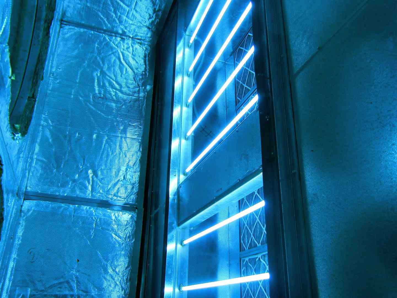 Does Uv Light Kill Mold