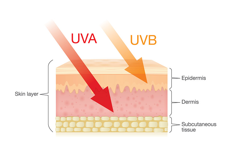 uva vs uvb sun damage